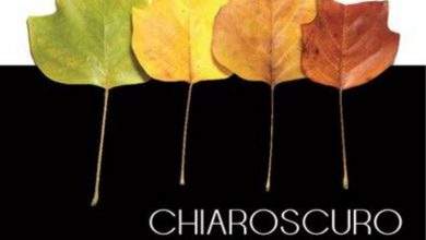 "Photo of ""Chiaroscuro"""